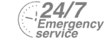24/7 Emergency Service Pest Control in East Dulwich, SE22. Call Now! 020 8166 9746